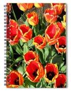 Skagit Valley Tulips 10 Spiral Notebook