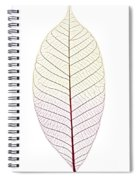 Skeleton Leaf Spiral Notebook