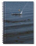 Skipping Stone Spiral Notebook