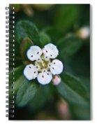 Skull Ghost Flower 2 Spiral Notebook