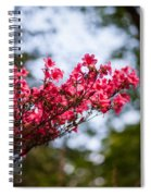 Skylit Blooms Spiral Notebook