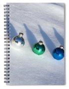 Sled Run Spiral Notebook