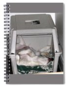 Sleeping In The Dog House Spiral Notebook