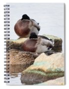 Sleeping Mallards Spiral Notebook