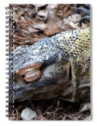 Sleeping Monster Spiral Notebook