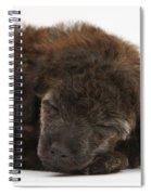 Sleeping Puppy Spiral Notebook