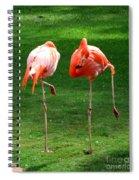 Sleepwalkers Spiral Notebook