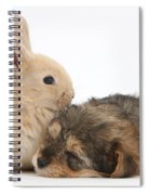 Sleepy Yorkipoo Pup With Baby Sandy Spiral Notebook