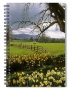 Slievenamon, Ardsallagh, Co Tipperary Spiral Notebook