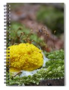 Slime Mould Spiral Notebook