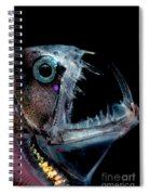 Sloanes Viperfish Spiral Notebook