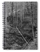 Slovenian Forest In Black And White Spiral Notebook