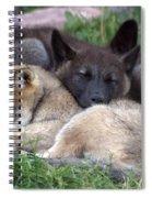 Slumber Buddies Spiral Notebook