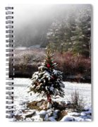 Small Christmas Tree Filtered Spiral Notebook
