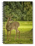 Small Stag Spiral Notebook