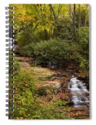 Small Stream Spiral Notebook