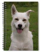 Smiley  0151 Spiral Notebook