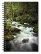 Smokey Mountain Stream No.312 Spiral Notebook