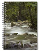Smokey Mountain Stream No.326 Spiral Notebook