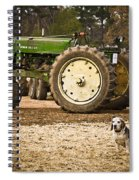 Smoky At The Tree Farm Spiral Notebook
