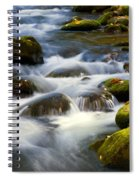 Smoky Mtn Stream Spiral Notebook