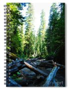 Snag On Iron Creek Spiral Notebook