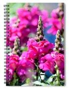 Snapdragon Sunshine Spiral Notebook