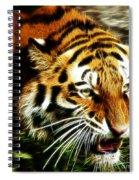 Snarling Tiger Spiral Notebook