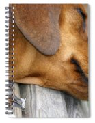Sniffing Out Dreams Spiral Notebook