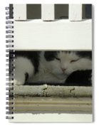 Snoozing On The Porch Spiral Notebook