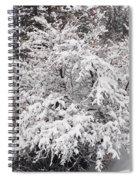 Snow Bush Spiral Notebook