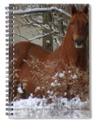 Snow Dreams Spiral Notebook