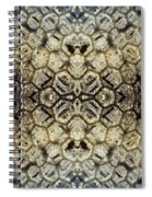 Snow Fence - Abstract Spiral Notebook