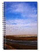 Snow Geese At Rest Spiral Notebook