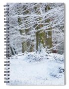 Snow Magic Spiral Notebook