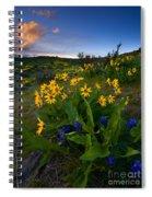 Snow Mountain Sunset Spiral Notebook