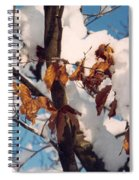 Snow On The Fall Leaves Spiral Notebook