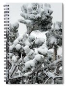 Snow On The Pines Spiral Notebook