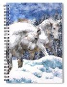 Snow Play Spiral Notebook