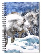 Snow Play Spiral Notebook