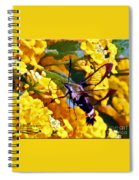 Snowberry Clearwing Hummingbird Moth Spiral Notebook
