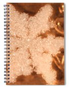 Snowflake On Coin Spiral Notebook