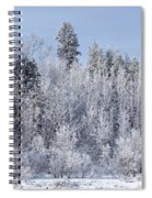Snows Hit Again In Early Spring Spiral Notebook