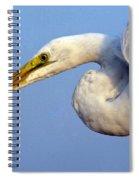 Snowy Egret Ready Spiral Notebook