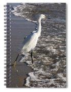 Snowy Egret Walking Spiral Notebook
