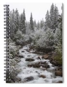 Snowy Foliage Along Stream In Autumn Spiral Notebook