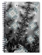 Snowy Night II Fractal Spiral Notebook