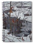 Snowy Pond Spiral Notebook