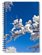 Snowy Trees And Blue Sky Spiral Notebook