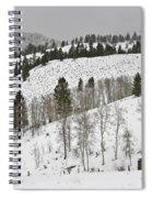 Snowy Wilderness Spiral Notebook